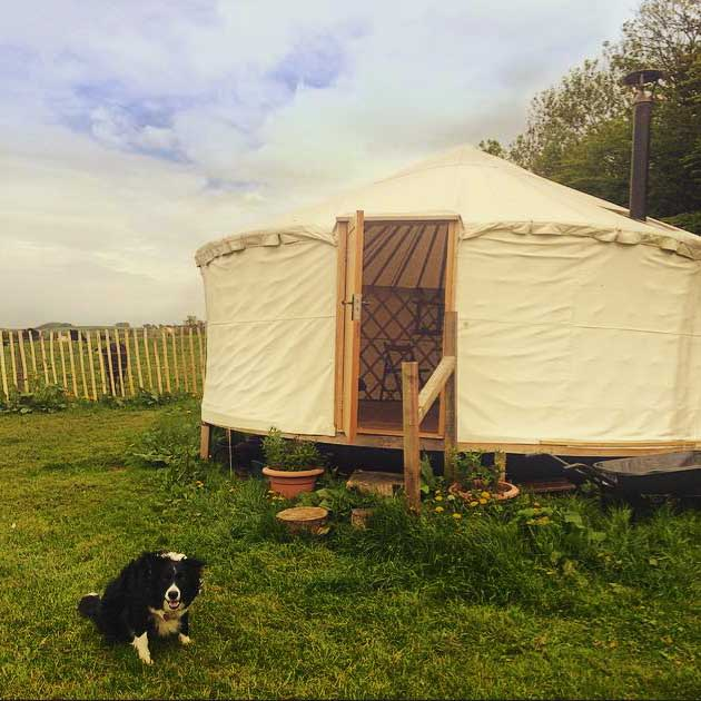 Manor Farm Yurt